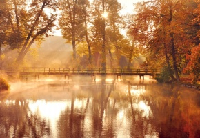 Обои осень, деревья, листья, оранжевые, желтые, озеро, вода, отражение, мост, солнце