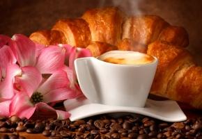 Обои цветы, зерна, кизил, пена, блюдце, напиток, чашка, Кофе