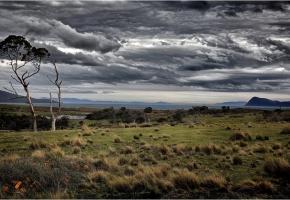 Обои Тасмания, остров, Марайа, тучи, трава, поле, деревья