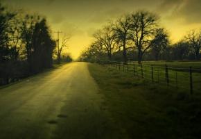 деревья, дерево, пейзаж, дорога, забор