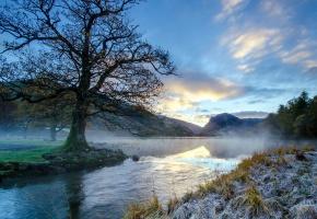 Обои утро, река, иней, туман, пейзаж, дерево