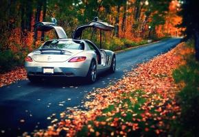 ���� Mercedes-Benz, SLS, 63, AMG, silvery, rear, �����, ������