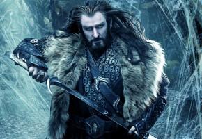 Обои The Hobbit, Thorin, Хоббит, Торин Оукеншильд, Король-Под-Горой, меч