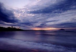 Обои небо, пляж, облака, вечер, закат, горизонт, пальмы