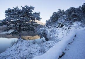 Обои дорога, река, зима, снег, дерево