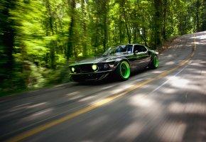 Обои rtr-x, дорога, природа, Ford, mustang