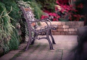 Обои скамейка, скамья, лавка, лавочка, забор, ограда, листья, кусты