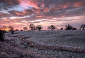 Обои sunrise, закат, облака, красные, иней, деревья, зима