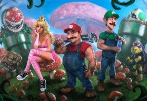 Обои Mario, Mario Bros, марио, принцесса, черепаха, грибы