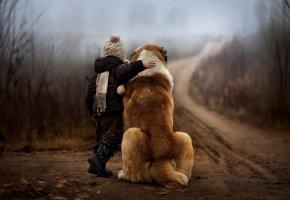 Обои собака, ребенок, осень, лес, туман, дорога, природа