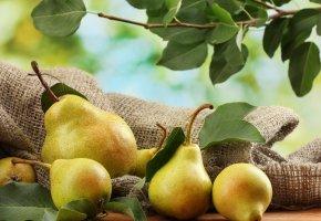 Обои листья, стол, груши, ветка, фрукты