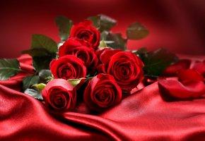 Обои цветы, розы, любовь, букет, valentine's day