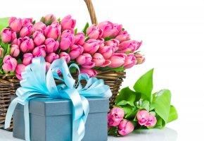 Обои цветы, тюльпан, розовые тюльпаны, букет