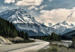 Обои дорога, изгиб, горы, снег, елки