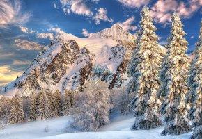 Обои зима, горы, деревья, пейзаж, снег, сугробы