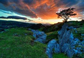 Обои небо, тучи, закат, горы, камни, склон, трава, дерево