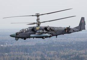Обои Ка-52, «Аллигатор», российский, ударный, вертолёт, полет