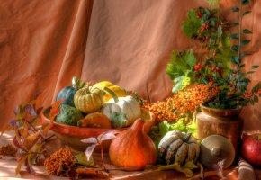 Обои натюрморт, тыква, яблоко, листья, ягоды, блюдо
