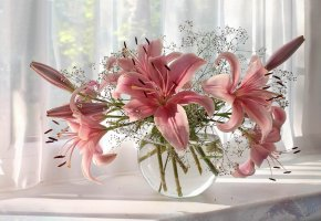Обои композиция, натюрморт, ваза, лилии, белое, красота