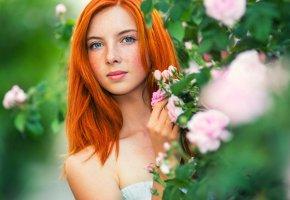 Обои рыжеволосая, веснушки, глаза, портрет, цветы