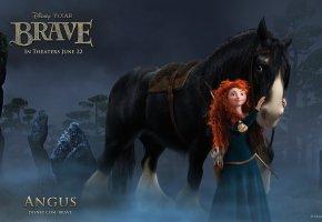Обои angus, ночь, лес, принцесса, конь, brave