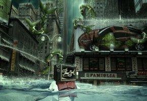 Обои Город, улица, здания, потоп, растения, человек