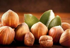 Обои орехи, фундук орех, листики, скорлупа
