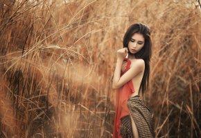 Обои азиатка, лето, тело, трава