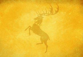 Обои олень, фон, желтый, рога