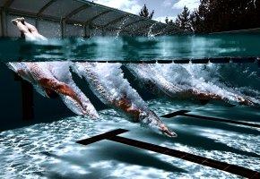 Обои плавание, прыжок, брызги, вода, бассейн