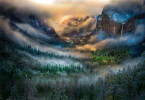 Обои горы, лес, деревья, туман