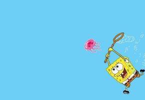 Обои квадратные штаны, Spongebob, спанч боб, губка боб