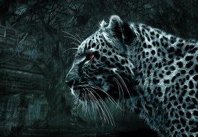 Обои леопард, кошка, темный фон, красиво, фэнтези, хищник