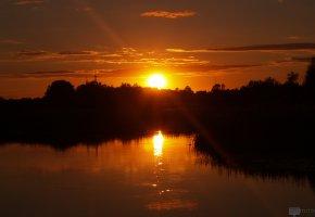 Обои озеро, закат, камыш, солнце, тишина