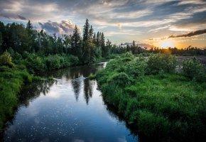 Обои лето, река, лес, рыбалка, небо, закат