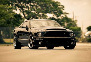 ���� mustang, �������� �����, Ford, black, gt