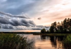 Обои закат, лес, вода, покой, камыш, облака