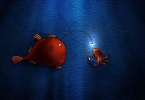 Обои рыбка, лампочка, осьминог, книга, подводный мир, вода