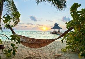 Обои tropical, paradise, beach, palms, sea, ocean, sunshine, summer, vacation, hammock, пляж, море, пальмы, тропики, песок, берег