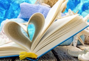 ���� summer, book, seashells, shells, love
