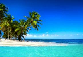 Обои тропики, море, пляж, пальмы