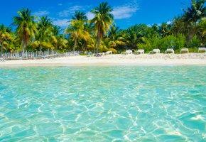 Обои тропики, море, пляж, пальмы, отдых