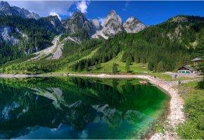 Обои горы, лес, озеро, берег, Швейцария