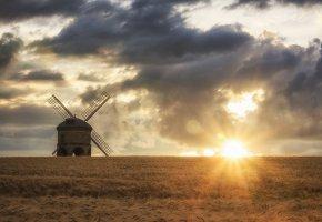 Обои поле, колосья, мельница, солнце, лучи