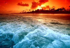 Обои берег, волны, пляж, пальмы, закат