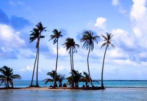 Обои пляж, песок, пальмы, море, отдых