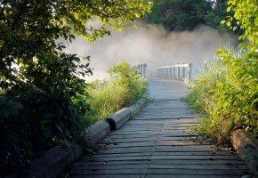 Обои река, ручей, дорога, тропа, мостик, туман