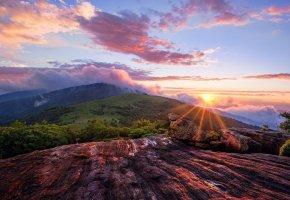 Обои горы, красиво, туман, утро, облака, солнце, скалы, лес