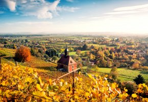 ���� Dresden, �������, germany, ��������, �����, ����, ��������