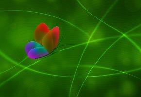Обои Бабочка, цвет, стиль, линии, зеленый фон